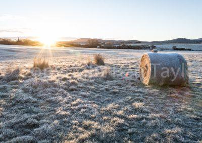Bothwell - sunrise at Ratho Farm
