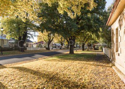 Ross - Church Street in autumn