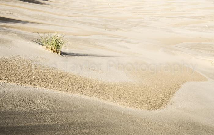 Sand shapes, Bruny Island, Tasmania